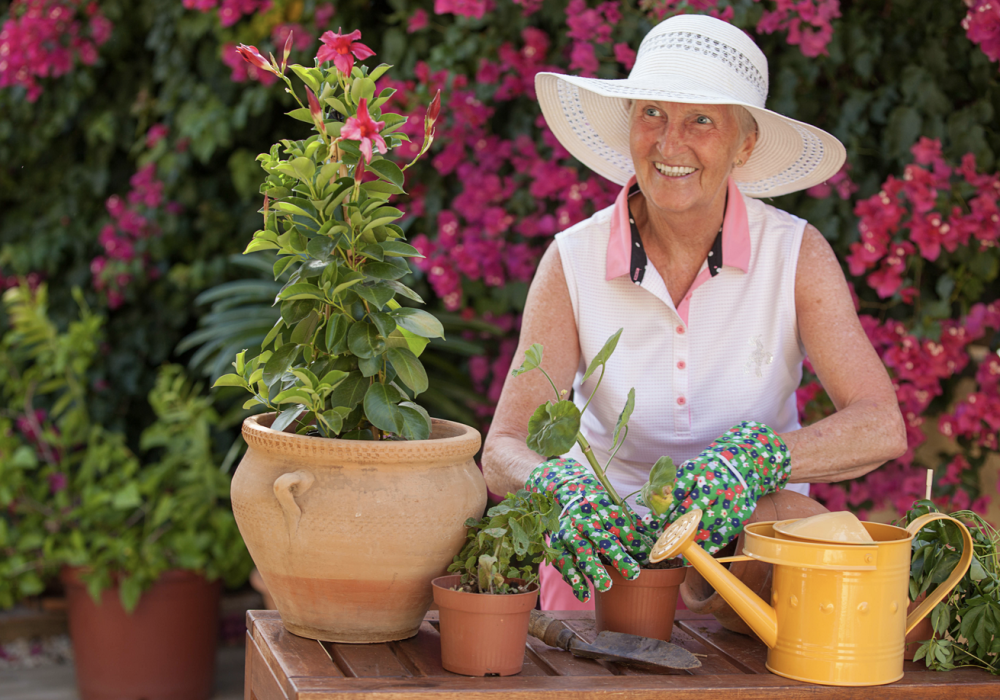 The Easiest Gardening Tools For Seniors